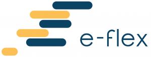 e-flex-logo-3